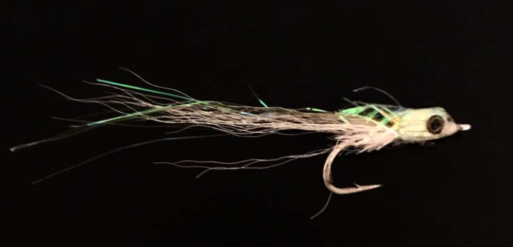 white bait imitation fly