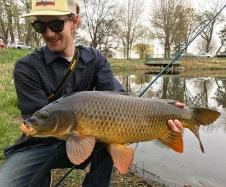 big carp on the fly rod twin cities