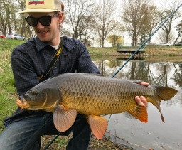 big carp on the fly rod twin cities