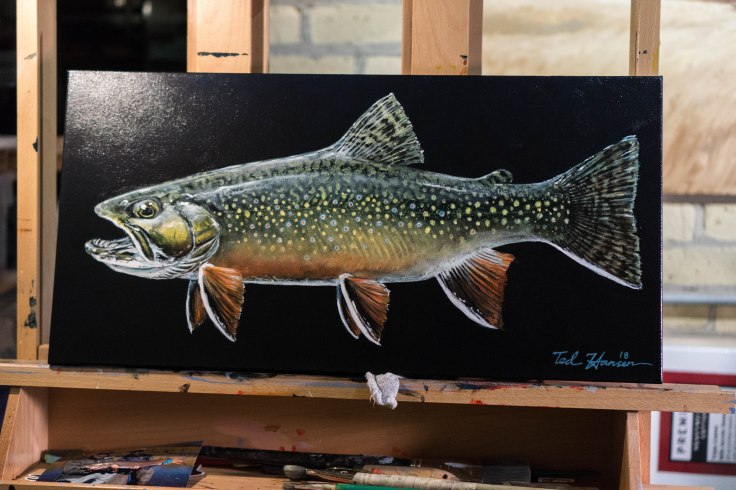Ted Hansen Art, Driftless Brook Trout, Ted Hansen, Fly Fishing Art, Fish Art