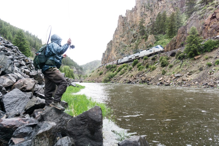 colorado river, fly fishing